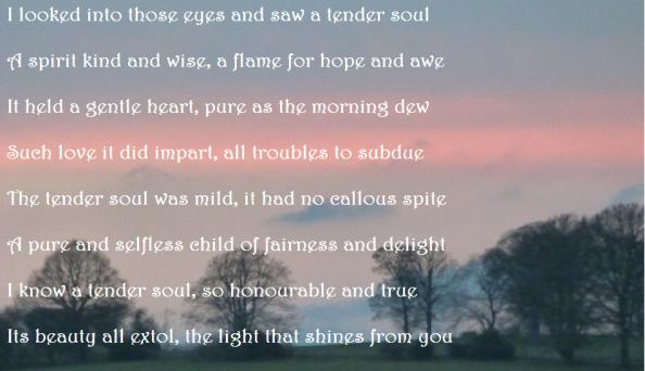 the tender soul