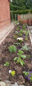 garden may 2013 2013-05-13 001